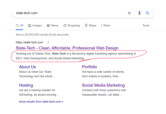 Google uses meta-descriptions (circled in red) to help bots determine what a webpage is about.